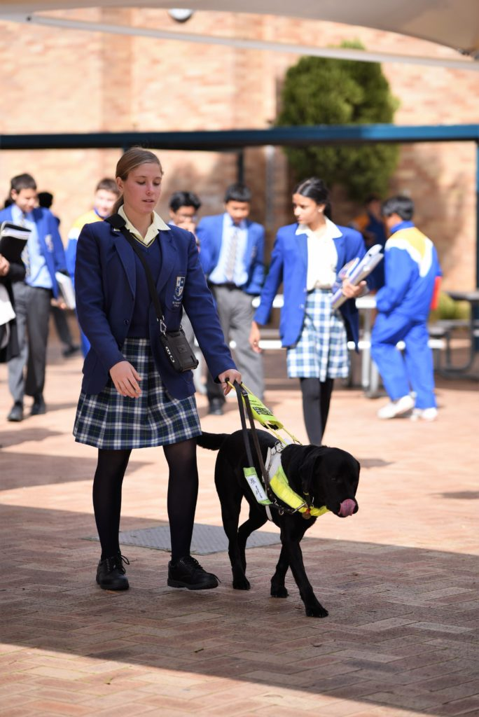 Tegan's guide dog is in a class of his own